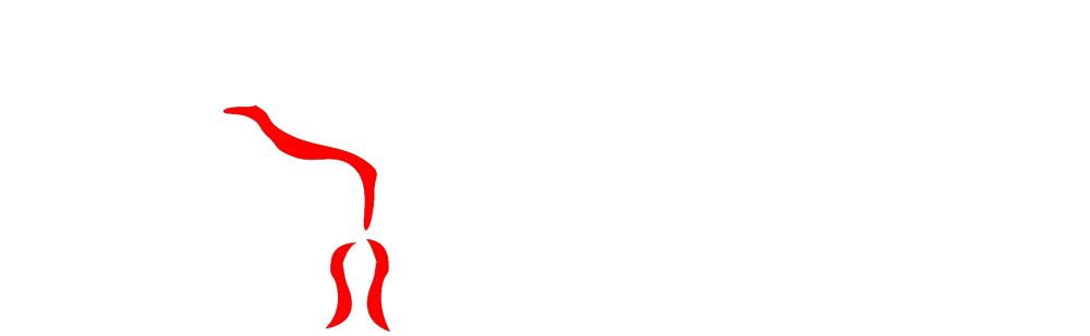 Academia NonFiction